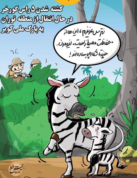 کاریکاتور: واکنش جدید گورخرها به شکارچیان
