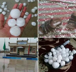 بارش تگرگهای تخممرغی در بوشهر+عکس