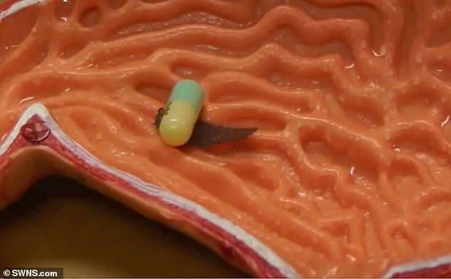 ربات هزارپایی که به داخل بدن دارو میرساند+تصاویر