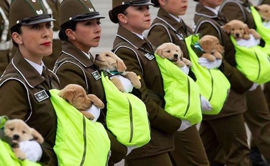عکسی جالب از مامورین پلیس زن در شیلی