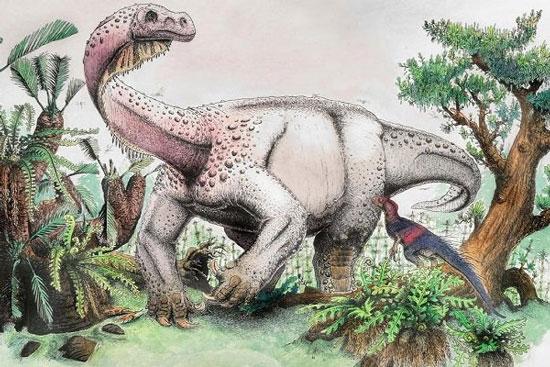 بزرگترین دایناسور جهان شناسایی شد+عکس