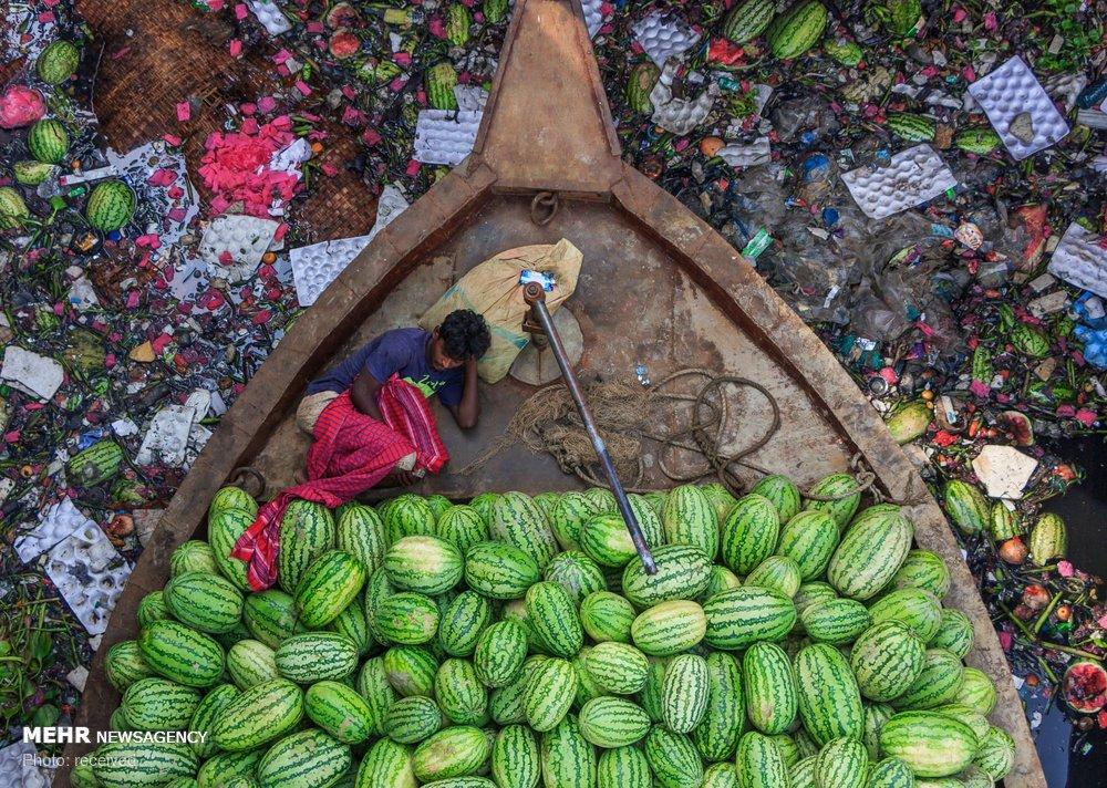 شکار زیبای عکاس از لنج هندوانه+عکس