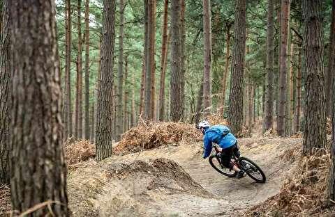 تصاویری مهیج از دوچرخه سواری در جنگل