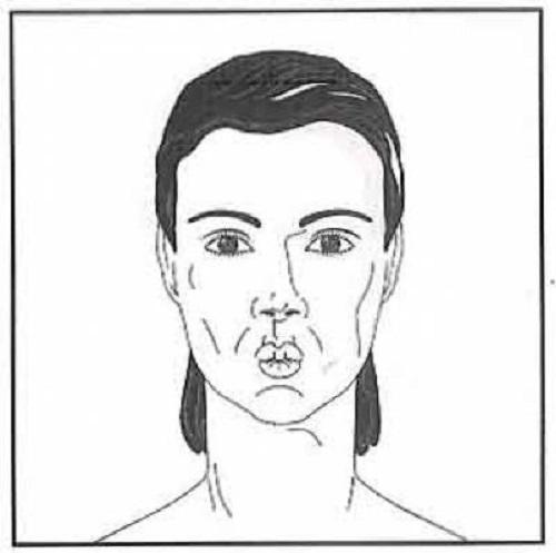 ورزش صورت {hendevaneh.com}{سایتهندوانه} - 204571 177 - آموزش چندین حرکت مفید برای ورزش صورت+تصاویر