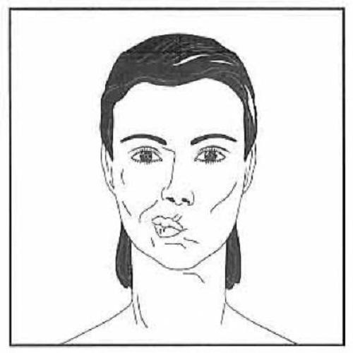 ورزش صورت {hendevaneh.com}{سایتهندوانه} - 204572 897 - آموزش چندین حرکت مفید برای ورزش صورت+تصاویر