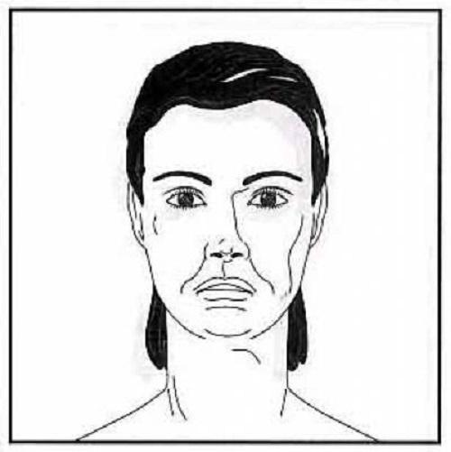 ورزش صورت {hendevaneh.com}{سایتهندوانه} - 204575 557 - آموزش چندین حرکت مفید برای ورزش صورت+تصاویر