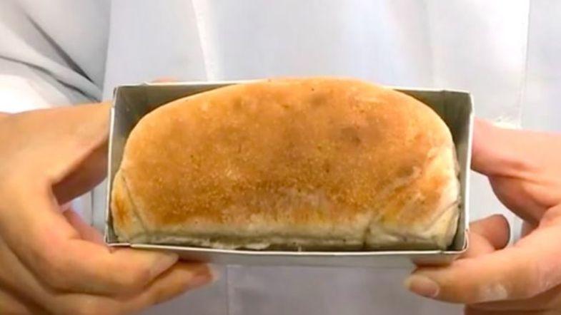 پخت نان با آرد سوسک +تصاویر