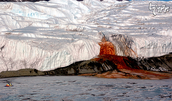 حقایق ۱۰۰% واقعی درباره قطب جنوب+عکس