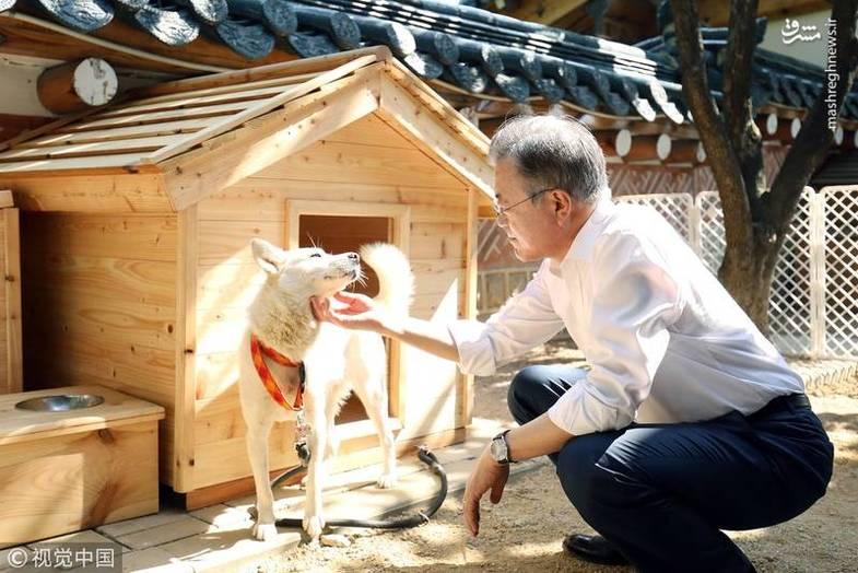 هدیه رهبر کره شمالی به رئیس جمهور کره جنوبی +عکس