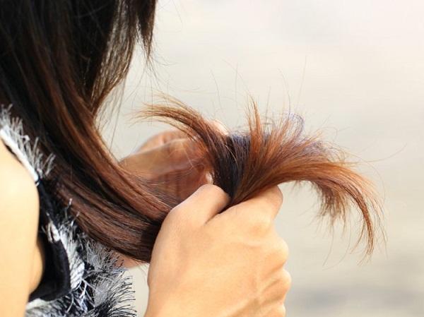 {hendevaneh.com}{سایتهندوانه} - 202246 762 - نشانه هایی که ثابت می کند برخلاف تصورتان موهای سالمی دارید
