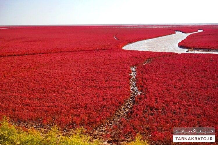 زیباترین مکان های رنگی در جهان