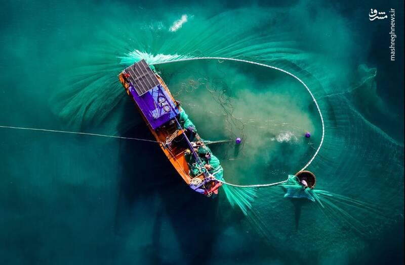 نمایی متفاوت از صید ماهی