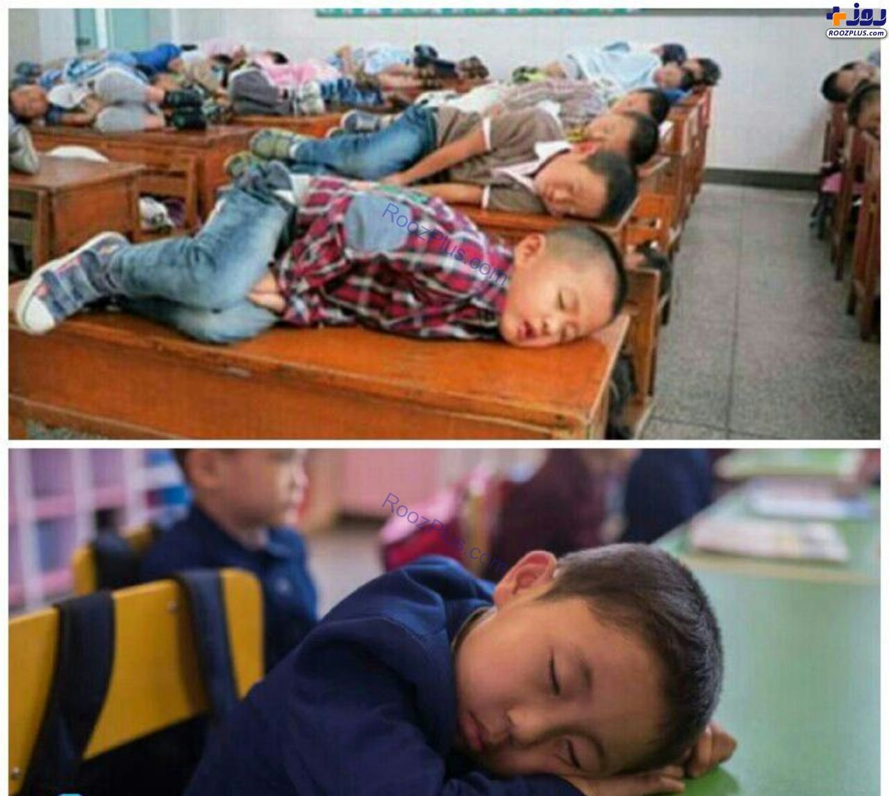 خواب دانش آموزان چینی در کلاس+عکس