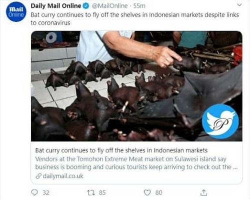 «کاری خفاش» غذای محبوب در اندونزی+عکس