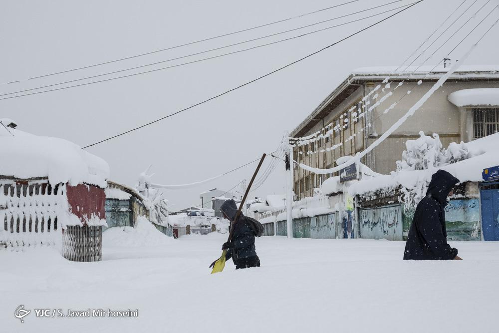 لباس تابستانی زیر بارش شدید برف در رشت+ عکس