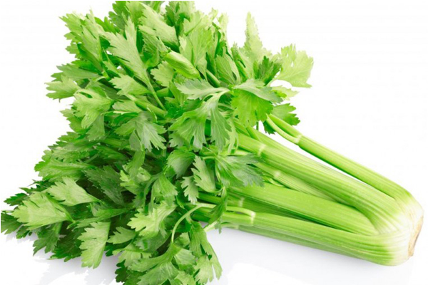 این سبزیجات فوق العاده کالریشان صفر است