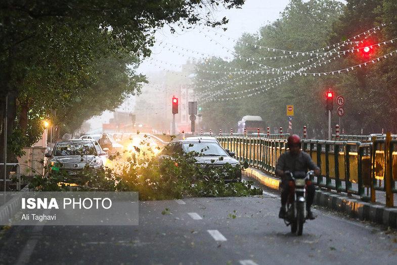 بلایی که طوفان شدید دیشب سر تهران آورد +عکس