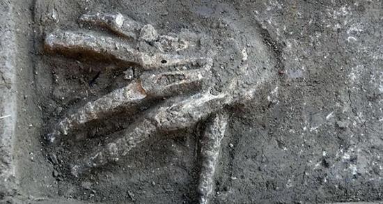 کشف دستهای بریده غولپیکر در مصر+عکس