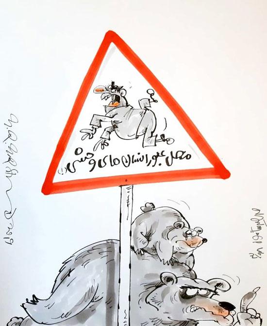 کارتون؛ محل عبور انسانهای وحشی