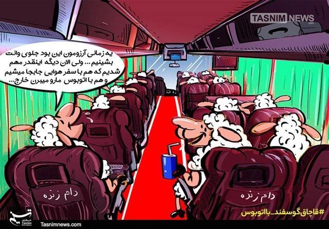 کارتون؛ این گوسفندا به آرزوشون رسیدن!