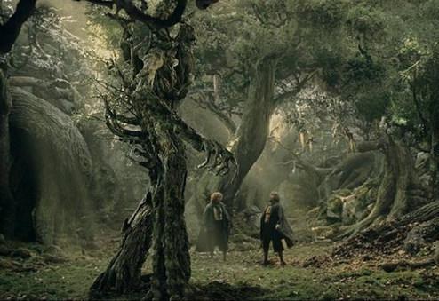 با درخت انسان نمای عجیب بلغارستان آشنا شوید+عکس