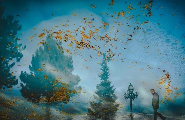 انعکاس نور و رنگ در عکس روز نشنال جئوگرافیک