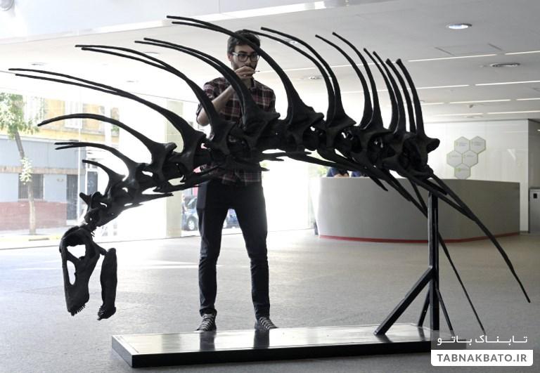 کشف یک دایناسور با سیستم دفاعی عجیب