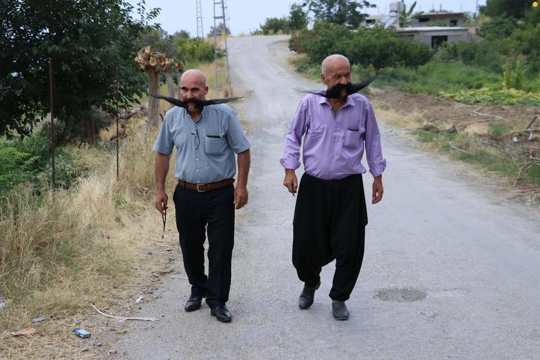 زندگی دو پسرعمو با سبیل ۸۰ سانتی+عکس