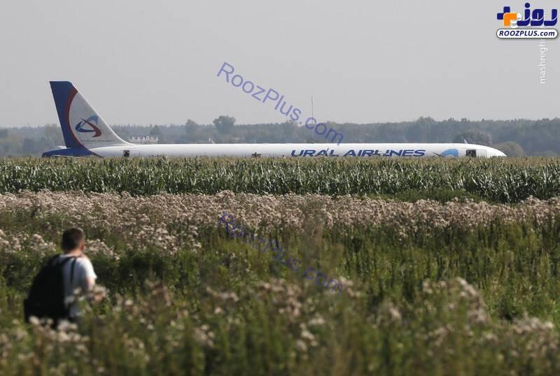 فرود اضطراری هواپیمای ایرباس در مزارع ذرت+عکس