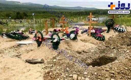 خرس گرسنه اجساد یک قبرستان را خورد+عکس
