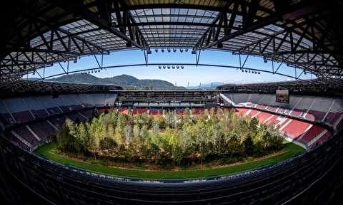 جنگلی نمادین در استادیوم فوتبال