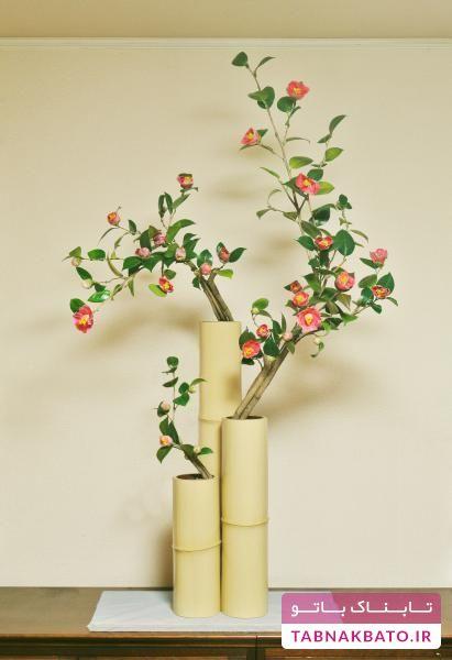 ایدههایی برای داشتن گلدانهایی از چوب بامبو