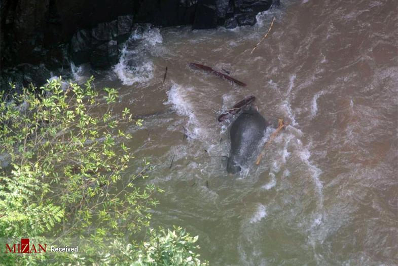 تصاویری از مرگ شش فیل بر اثر سقوط از یک آبشار