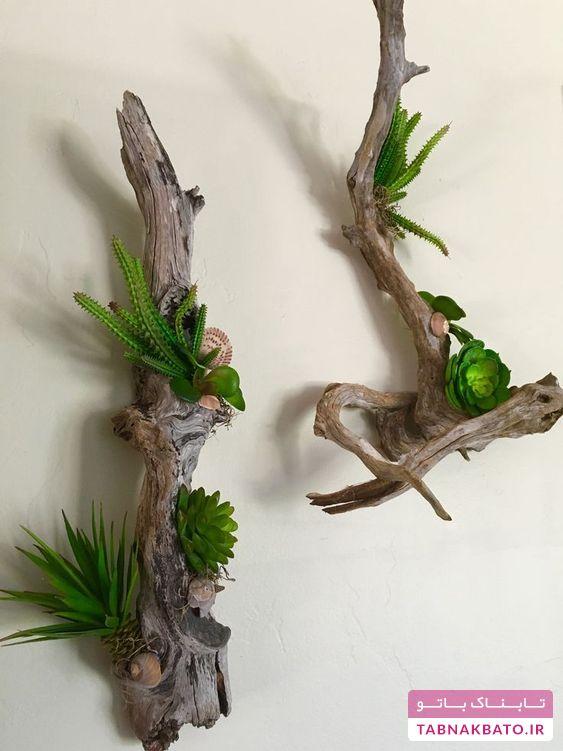 تبدیل شاخههای خشکیده، به گلدانهای زیبا