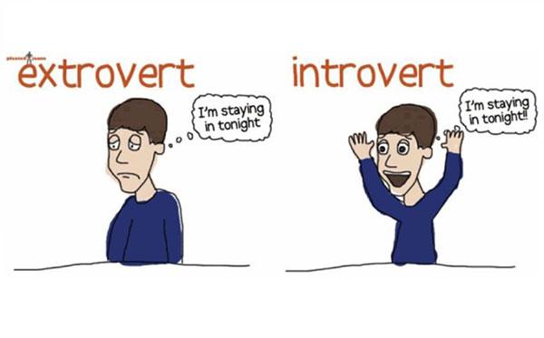 5 رفتار عجیب درونگراها و علت این رفتارها