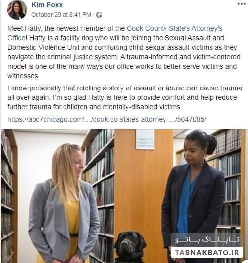 نخستین سگ به سمت وکیل در آمریکا مشغول به کار شد