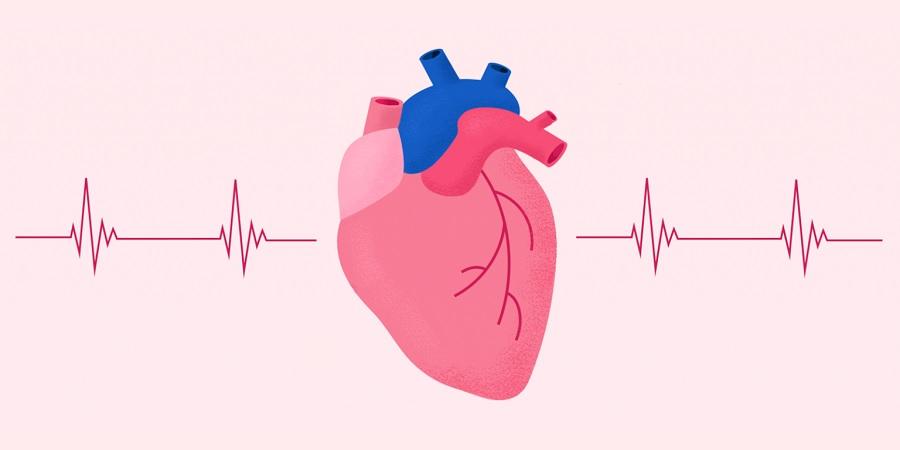 ضربان قلب نرمال چقدر است و چطور میتوانیم آن را اندازه بگیریم؟
