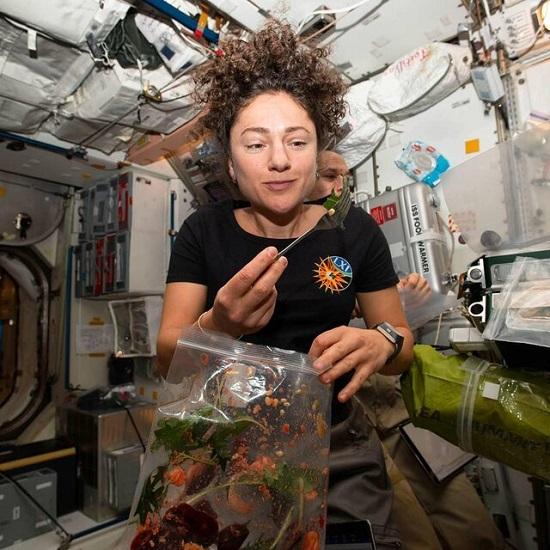 کشاورزی در ایستگاه فضایی بینالمللی+عکس