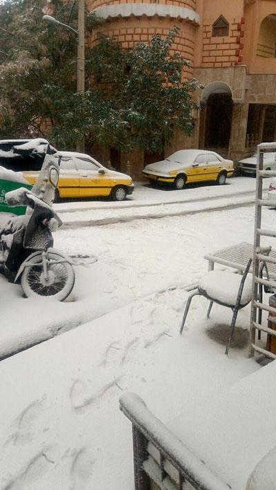 بارش برف پاییزی در برخی مناطق تهران +عکس