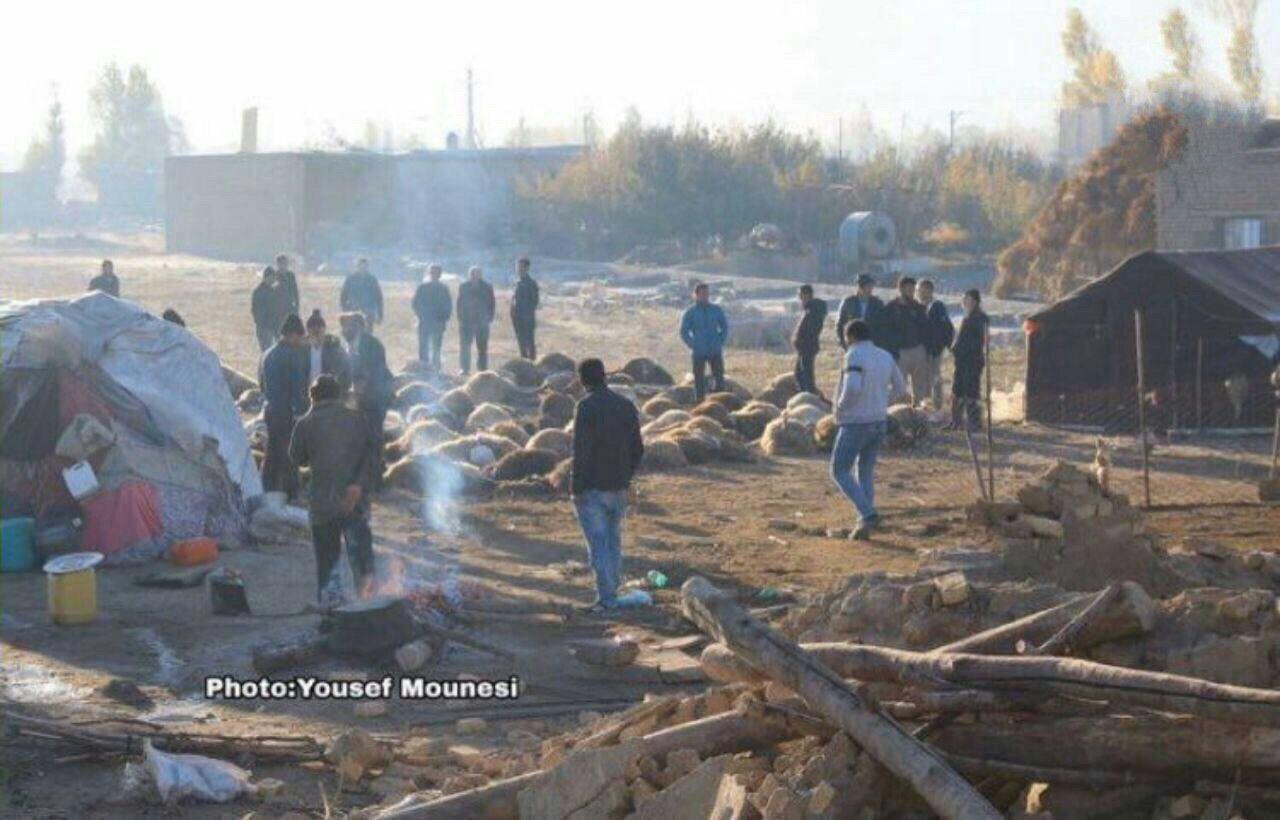 کار جالب اهالی روستای زلزله زده اسب فروشان سراب +عکس