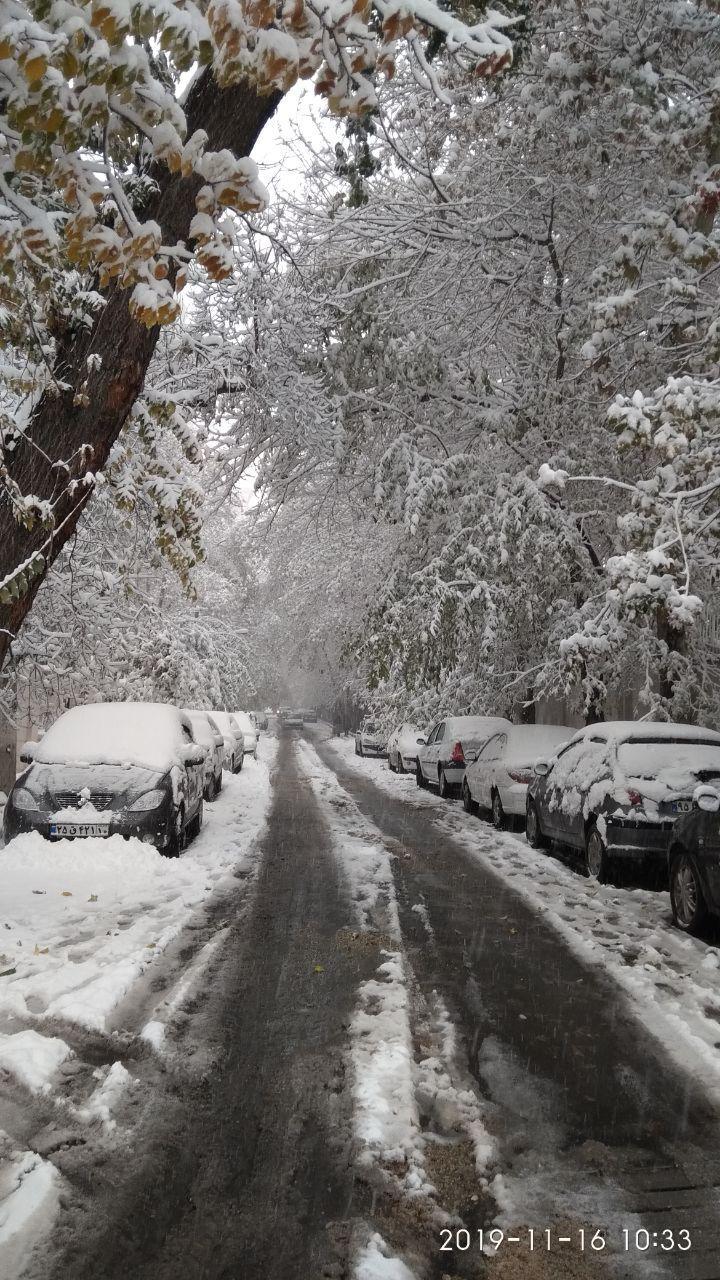 بارش برف پاییزی در خیابان فرمانیه