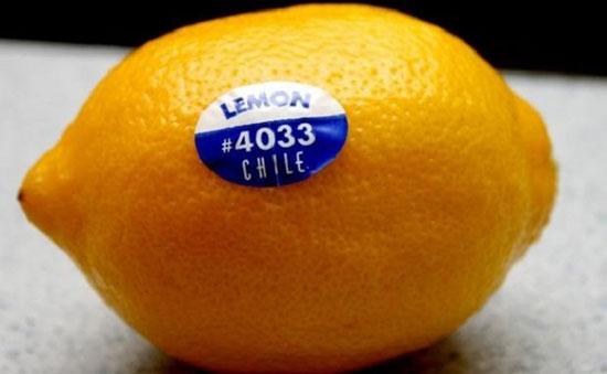 حقایقی جالب درباره میوهها و سبزیجات