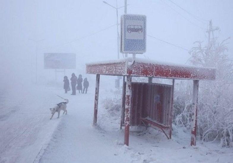 سردترین منطقه مسکونی جهان کجاست؟ +تصاویر