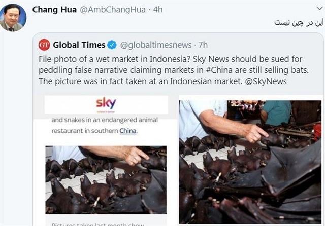 سفیر چین در ایران: تصاویر فروش خفاش مربوط به چین نیست