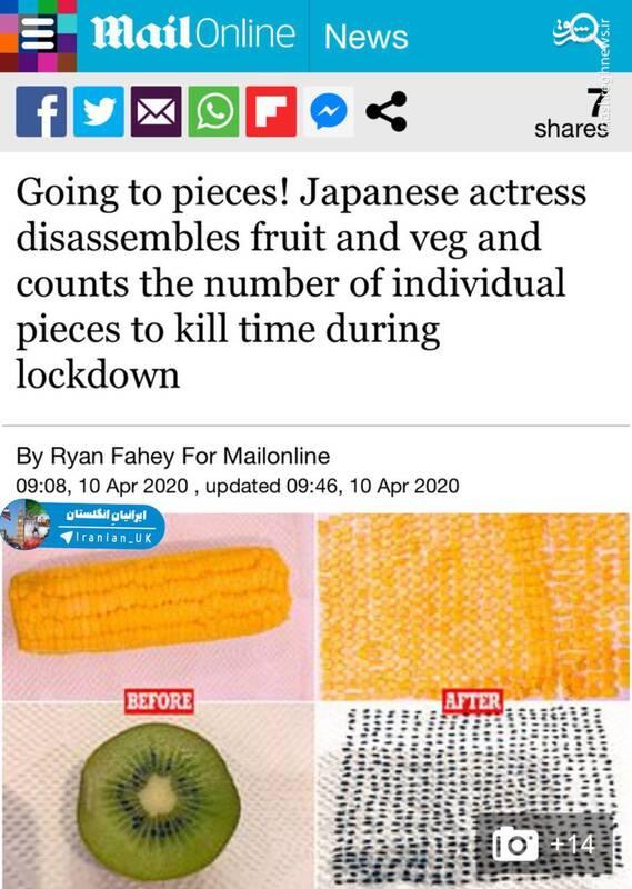 نتیجه در قرنطینه ماندن خانگی هنرمند ژاپنی +عکس