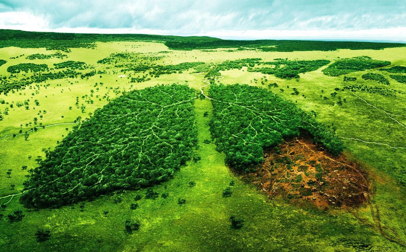 دستهای آلوده در طبیعت و وقوع کرونا