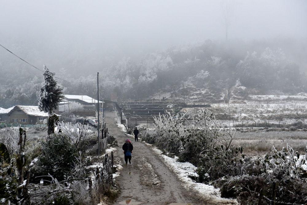 شادی برف در ویتنام + عکس