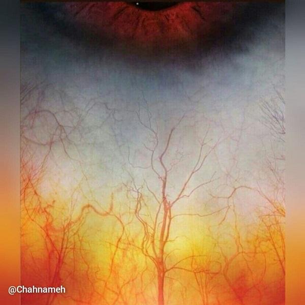 چشم انسان از نمای نزدیک