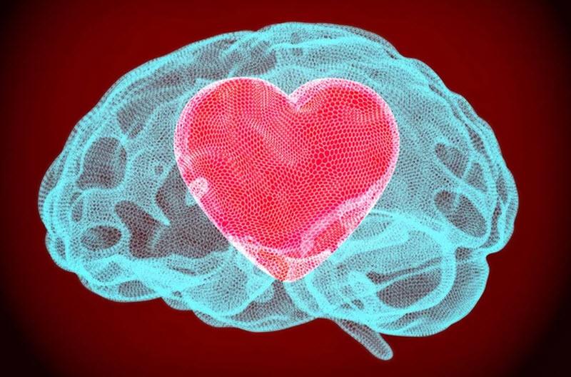 وقتی عاشق میشویم در مغزهایمان چه رخ میدهد؟!
