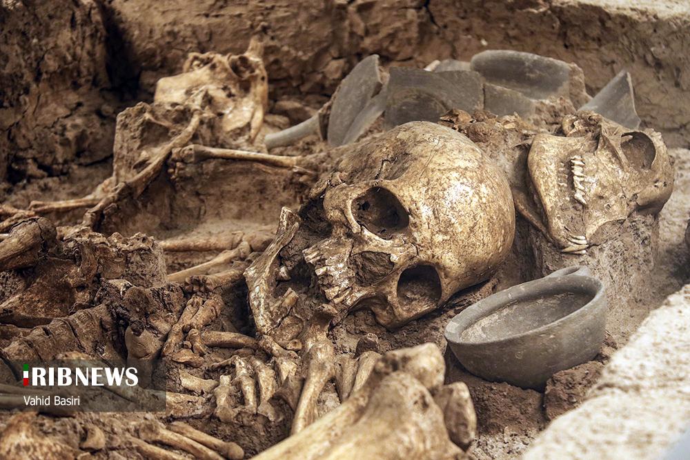 اسکلت انسان دوران باستان در موزه شهر قزوین+ عکس